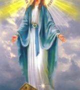 Мати Божа (Ковчег Спасіння)